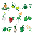 Fruit and vegetable cartoon vector image vector image