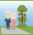 grandparents cartoon design vector image