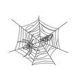 spider with moth in web sketch vector image vector image
