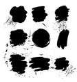 spots spray vector image