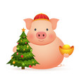 Cute pig with chinese gold and christmas tree on
