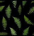 fern leaf background vector image vector image