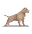 pitbull minimalist image vector image