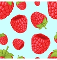 Seamless background with raspberries vector image vector image