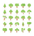 trees flat colored icons vector image vector image