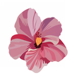 Tropical pink flower isolated vector image vector image