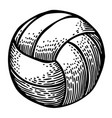 cartoon image of volleyball icon sport symbol vector image vector image