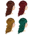 Curly Hairstyle3 vector image vector image