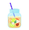 fruit water icon summer beverage and cold drink vector image