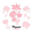 magnolia flowers hand drawn set vector image vector image