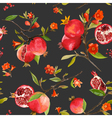 Seamless Pattern Pomegranate Tropical Background vector image vector image