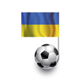 Soccer Balls or Footballs with flag of Ukraina vector image