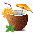coconut drink cocktail with mint leaf and orange vector image