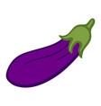 eggplant isolated object flat image vector image