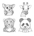 fashion animals hand drawn hipster porterts vector image vector image