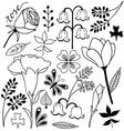 flower sketch doodle set 2 vector image