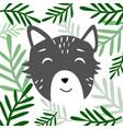 head of cute animal vector image vector image