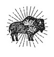 wild life grunge style bison silhouette isolated vector image vector image