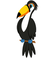 Funny Cartoon Toucan vector image