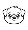 isolated cute pig face vector image vector image