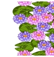 Natural seamless border with lotus flowers and vector image vector image