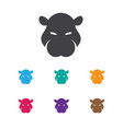 of zoo symbol on hippo icon vector image