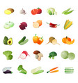 polygonal vegetables icon set vector image vector image