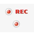 rec button vector image vector image