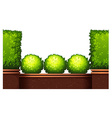 Seamless fence design with bushes vector image vector image