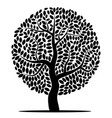 silhouette of a tree isolated vector image vector image