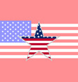 star in shape flag on background flag of usa vector image