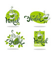green and herbal tea collection of organic logo vector image