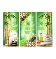 banners for spa treatments with aromatic vector image