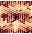 Brown Hexagonal Pattern vector image vector image