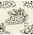 Bunch of grapes sketch style seamless vector image