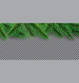 christmas decoration with fir branches vector image