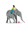 Elephant polo Cartoon vector image vector image