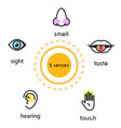 five human senses vision hearing smell touch vector image vector image