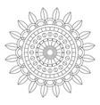 floral mandala vector image