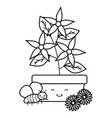 garden flowers plant in pot with insects flying vector image