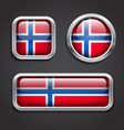 Norway flag glass buttons vector image vector image