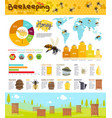 beekeeping and honey production infographic vector image vector image