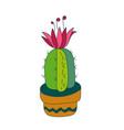 cactus cacti vector image