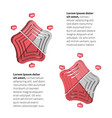 flat design spider chart infographic vector image vector image