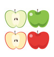 green and red apple sliced vector image vector image