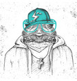 hipster animal frog dressed in cap like rapper vector image