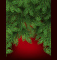 red background with christmas tree branches vector image vector image