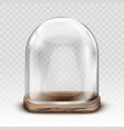 vintage glass dome and wooden tray realistic vector image vector image