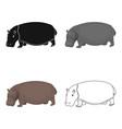 hippopotamus an omnivorous artiodactyl animal vector image