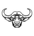 buffalo head icon on white background vector image